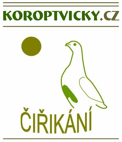 Follow Us on Koroptvičky